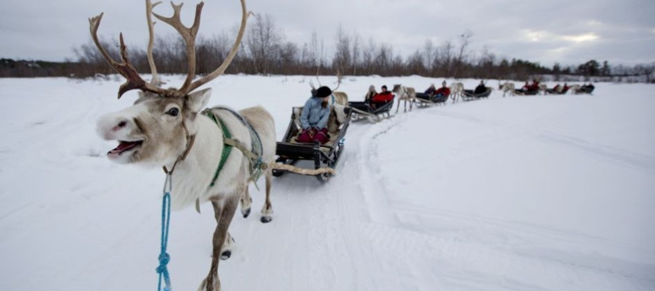 Day trip to meet Santa in magical Lapland | Transun